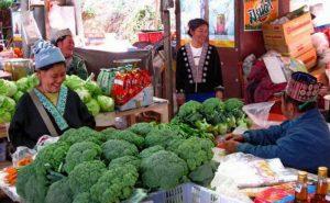 ตลาดชาวเขา ดอยอินทนนท์ doi inthanon national park chiang mai