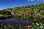 สวนดอกไม้เมืองหนาว บนดอยอินทนนท์ doi inthanon national park chiang mai