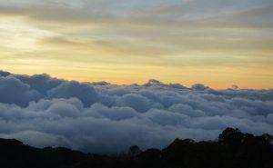 ทะเลหมอกฤดูหนาว บนดอยอินทนนท์ doi inthanon national park chiang mai