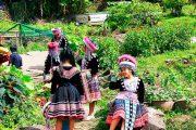 ชุดแม้ว บ้านม้งดอยปุย doi suthep temple hmong village tour