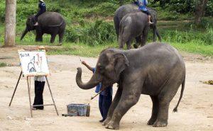 ช้างวาดภาพ