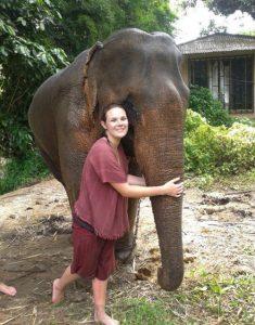 อาบน้ำช้าง เล่นกับช้าง เชียงใหม่