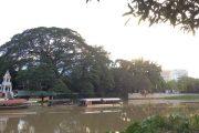 ริมฝั่งแม่น้ำปิง maeping river cruise