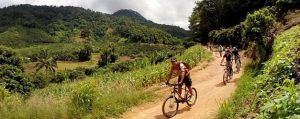ทัวร์ปั่นจักรยานเสือภูเขา เส้นทางออฟโรดขุนช่างเคี่ยน เชียงใหม่