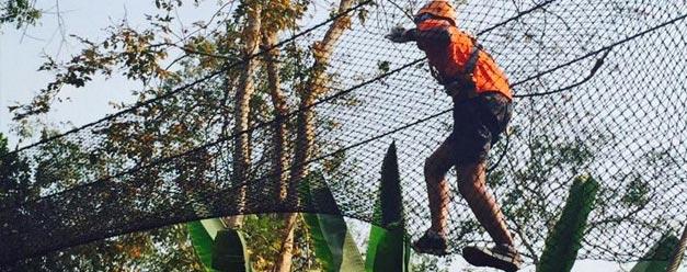 ทัวร์ผจญภัยบนต้นไม้ Phoenix Adventure Park เชียงใหม่