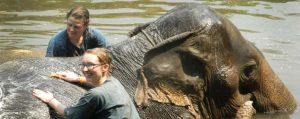 ทัวร์เดินป่า อาบน้ำช้าง แม่แตง เชียงใหม่