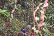 เดินป่า แม่แตง เชียงใหม่