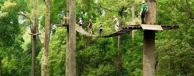 โหนสลิง Jungle Flight