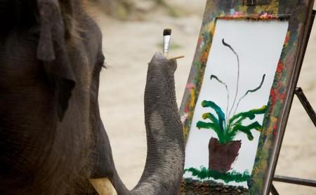 ช้างวาดรูป ปางช้างแม่สา แม่ริม เชียงใหม่